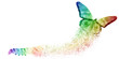 Leinwandbild Motiv White background of rainbow butterfly transformation liberate human right of LGBT freedom concept. Proud and love to be. Use to celebrate gay pride, coming out of true gender and sexuality equality