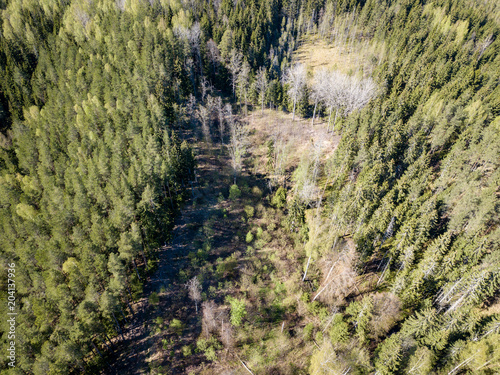 Plexiglas Pistache drone image. aerial view of rural area with fields and forests