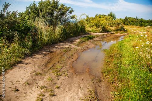 Plexiglas Honing old dirt road in the field