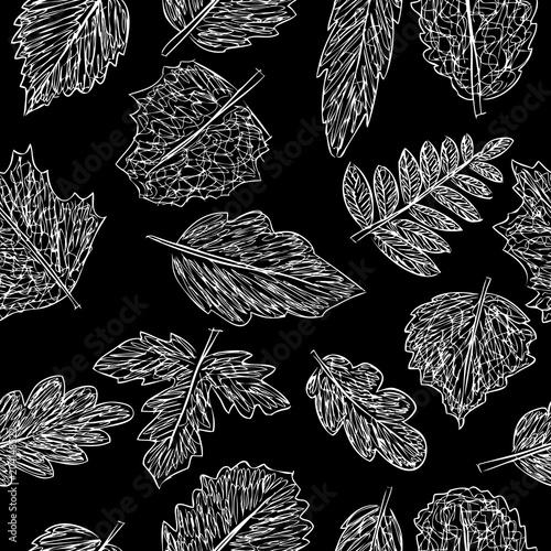 Materiał do szycia Wzór doodles liści drzew