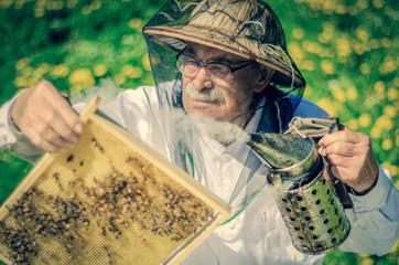 Pszczelarz podczas wiosennej inspekcji w pasiece