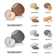 Hazelnut, pistachios, walnut, almonds.Different kinds of nuts set collection icons in cartoon,monochrome style vector symbol stock illustration web.