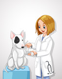 Veterinarian Doctor Helping a Dog - 204161328