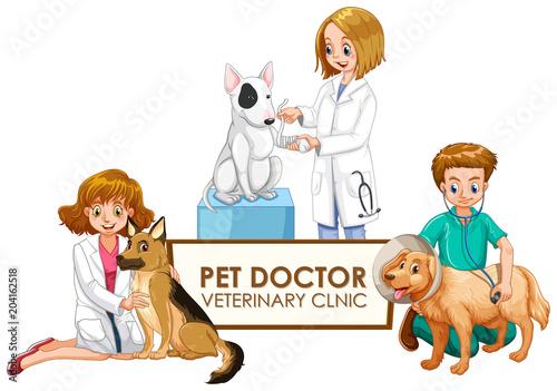 Plexiglas Kids Veterinarian Doctors with pets