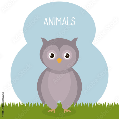 Fotobehang Lichtblauw cute owl in the field landscape character vector illustration design