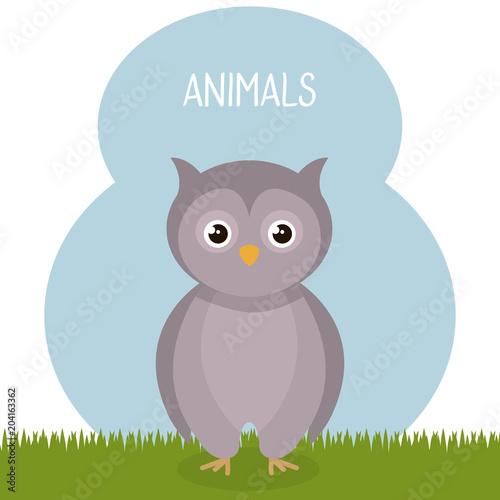 Aluminium Lichtblauw cute owl in the field landscape character vector illustration design