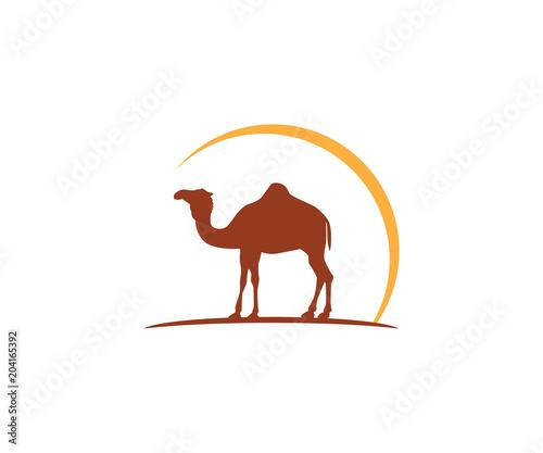072e5729821 camel and sun vector icon logo design | Buy Photos | AP Images ...