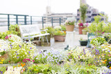 A woman enjoying gardening on the rooftop - 204165778