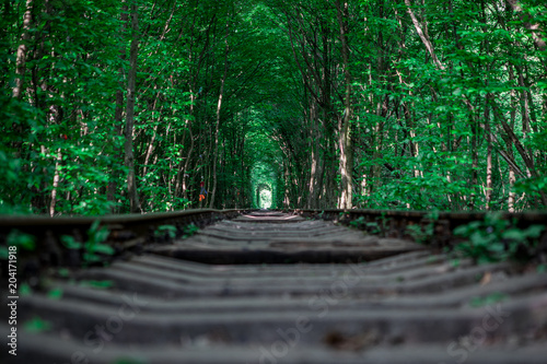 kolej w leśnym tunelu miłości