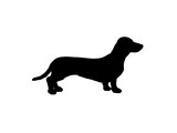 the silhouette of a Dachshund. raster illustration