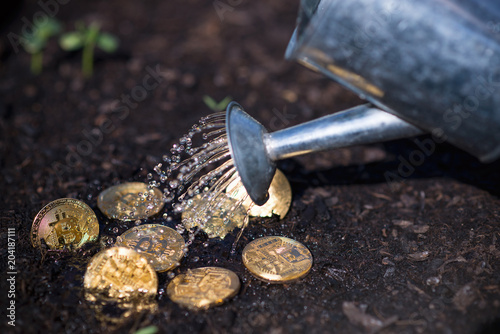 Bitcoin Growing Watering - 204187111