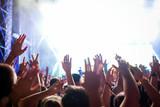 Portrait of happy crowd enjoying at music festival - 204191150