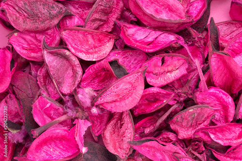 Foto Murales dried red petals on a pink background