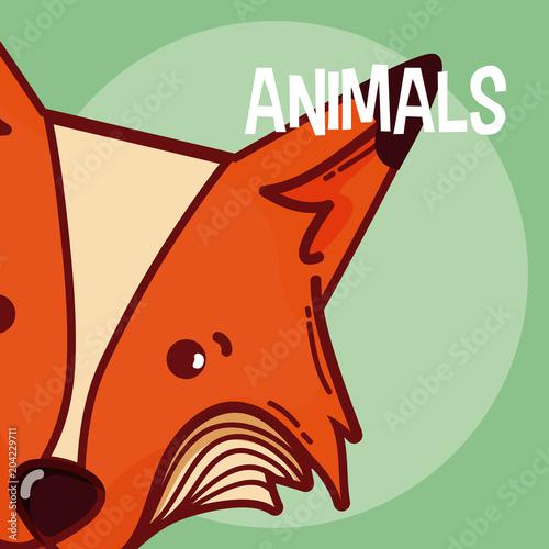 Fototapeta Fox animal cartoon