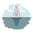 wild polar bear on iceberg vector illustration design