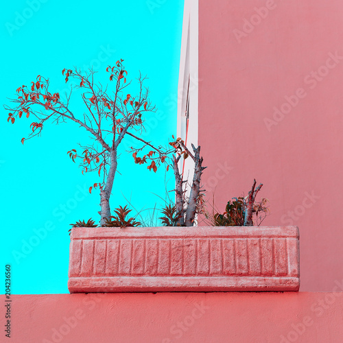 Plexiglas Turkoois Minimal pink mood. Plants on pink. Fashion art
