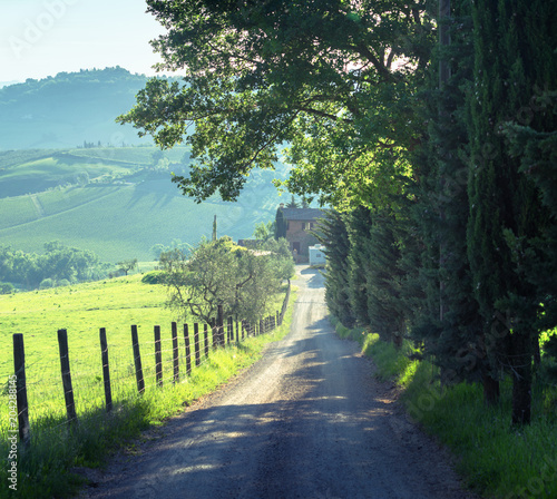 Fotobehang Toscane country road, tuscany, Italy