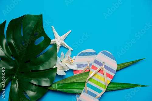 Poster palm leaf with flower and flip flops. Objects isolated on blue background