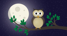 Cute Owl Illustration  The Owl Sits On A Branchnight Sticker