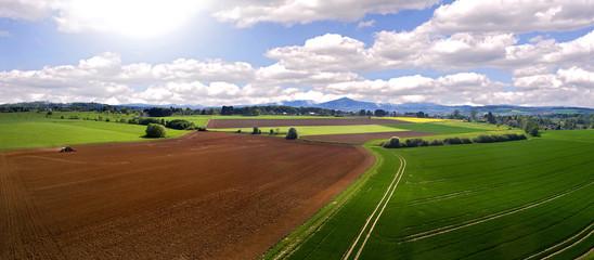 Landwirtschaftliche Felder im Frühling