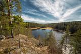 природа россии лес карелия
