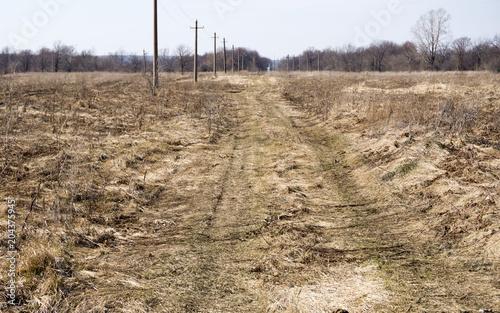Plexiglas Lente the road in the spring field