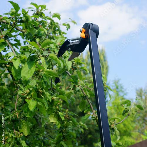 Pruning Stick Tree Pruner