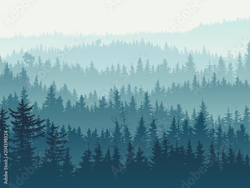 zamglone-drzewa