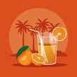 Summer orange juice glass cup vector illustration graphic design
