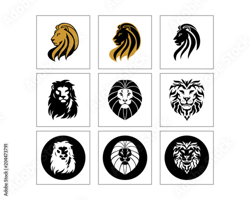 Fototapeta lion head silhouette image vector icon set