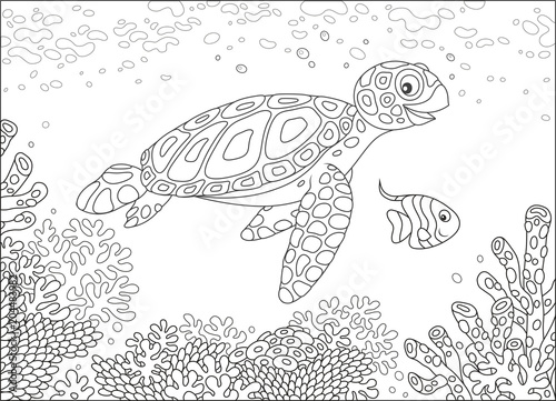 Fototapeta Funny sea loggerhead turtle and a small butterfly fish swimming over corals on a reef in a tropical sea, black and white vector illustration in a cartoon style for a coloring book