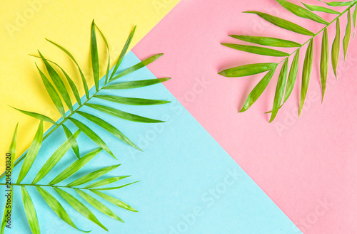 Floral flat lay Palm leaves Summer background