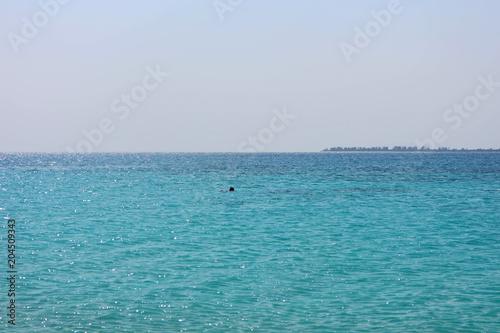 Fotobehang Zanzibar Schorchler im glasklaren Wasser