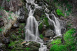 mountain waterfall in summer, green plants, a river in the jungle - 204553980