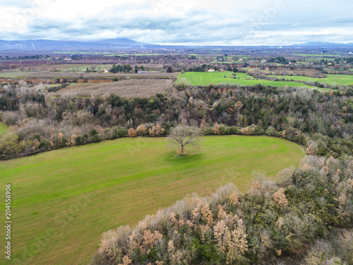 Plexiglas Betoverde Bos Aerial view of the forest of Castel Sant Elia in Italy
