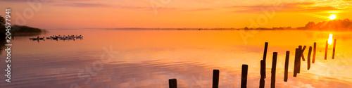 Canvas Honing amazing golden sunset with ducks | panorama