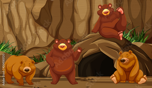 Bear at the Mountain Cave