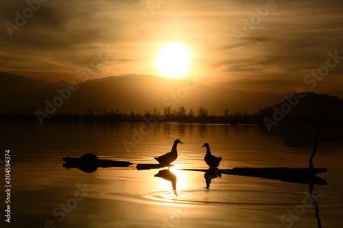 Aluminium Zee zonsondergang A lovely sunset