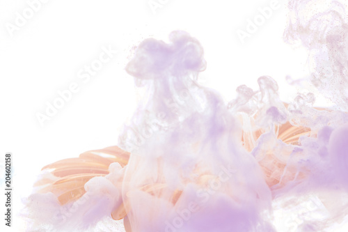 Fotobehang Gerbera bright blue flower with violet splashes isolated on white background