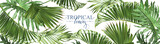 Tropical leaves web banner - 204606922