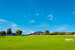 Quadro Green meadow and blue sky in Central California