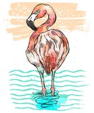 Hand drawn vecror colorful illustration of isolated pink flamingo which stands in blue wave water.Bird of paradise illustration.Tropical birds color card. - 204633301