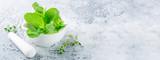 Fresh mint leaves. Banner Concept - 204637184