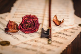 Dried rose over an old musical score