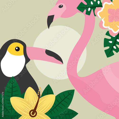 summer time tropical birds toucan and flamingo vector illustration