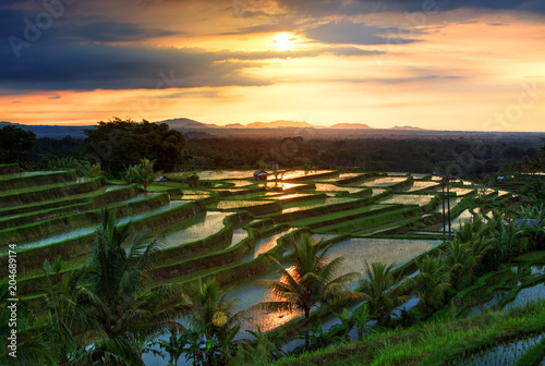 Plexiglas Bali Famous Jatiluwih Rice terraces on Bali during sunrise, Indonesia