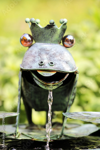 Plexiglas Kikker der froschbrunnen