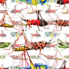 Exotic crickets wild insect in a watercolor style pattern. Full name of the insect: crickets, grasshoppers . Aquarelle wild insect for background, texture, wrapper pattern or tattoo.