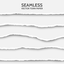 Seamless Torn Paper Set On Gray  Sticker