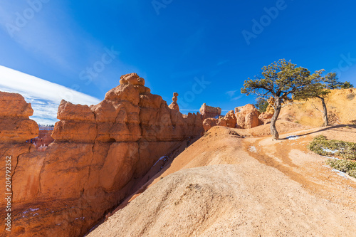 Plexiglas Beige Bryce Canyon Scenic Winter Landscape